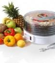 desidratador frutas